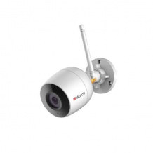 DS-250W (4 mm)